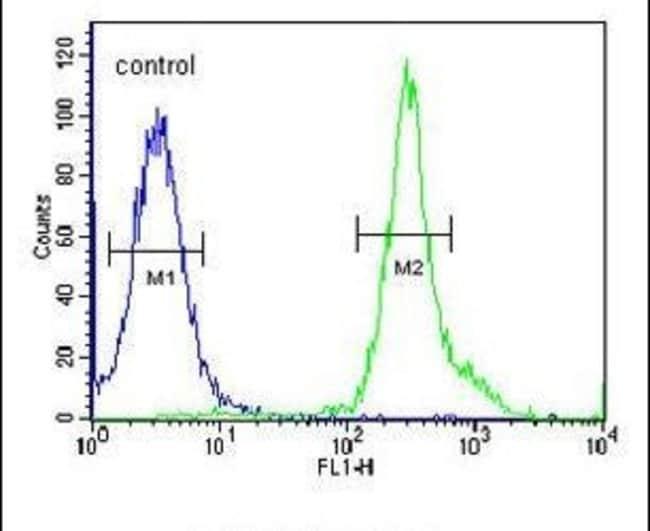 TSPAN3 Rabbit anti-Human, Mouse, Polyclonal, Invitrogen 400 µL; Unconjugated