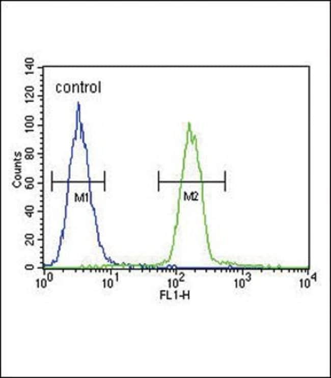 Tyrosinase Rabbit anti-Human, Polyclonal, Invitrogen 400 µL; Unconjugated