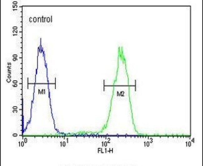 UBA52 Rabbit anti-Human, Polyclonal, Invitrogen 400 µL; Unconjugated