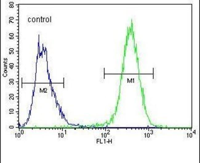 UBFD1 Rabbit anti-Human, Polyclonal, Invitrogen 400 µL; Unconjugated