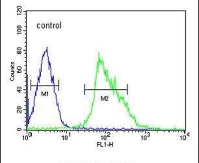 USP17 Rabbit anti-Human, Polyclonal, Invitrogen 400 µL; Unconjugated