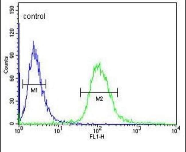 UTY Rabbit anti-Human, Polyclonal, Invitrogen 400 µL; Unconjugated