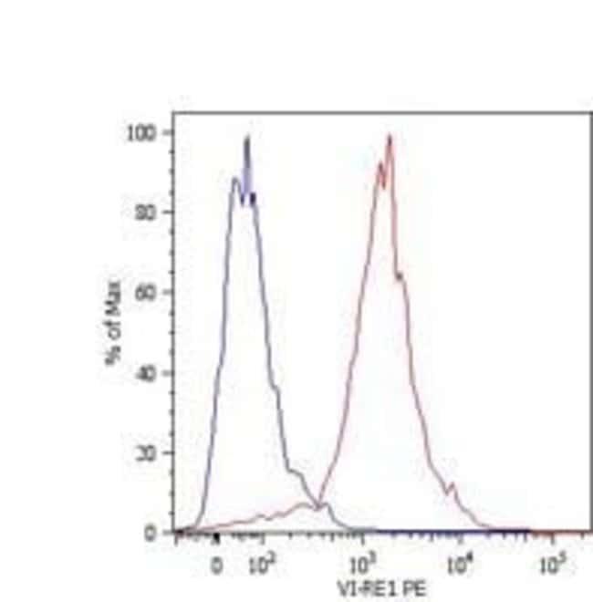 Vimentin Mouse anti-Human, PE, Clone: VI-RE/1, Invitrogen 100 µg;