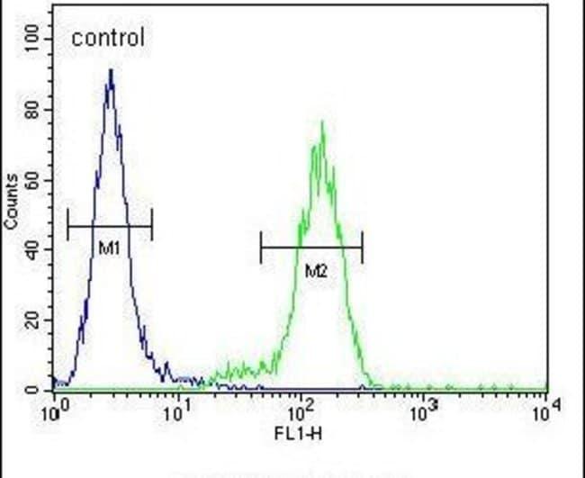 VWA3B Rabbit anti-Human, Mouse, Polyclonal, Invitrogen 400 µL; Unconjugated