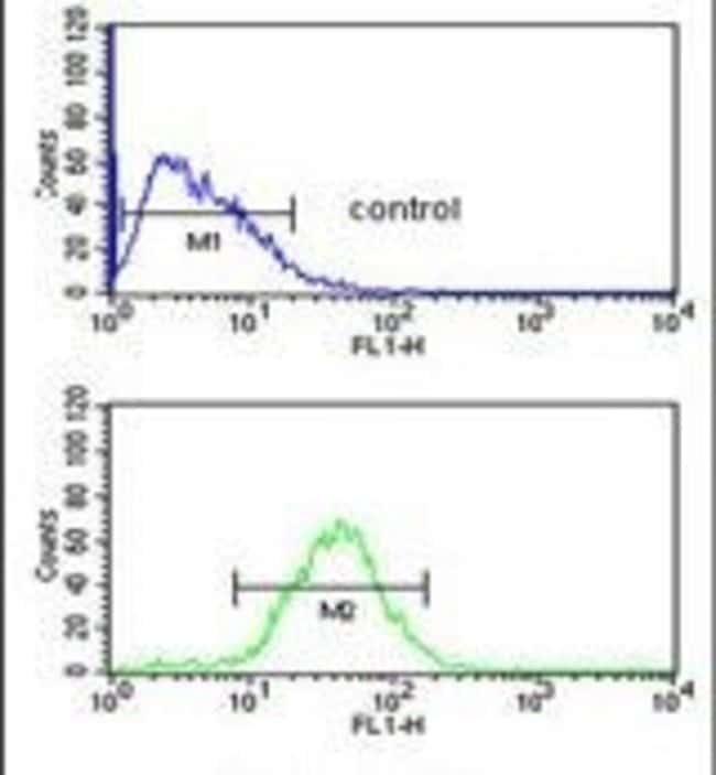 WDR43 Rabbit anti-Human, Polyclonal, Invitrogen 400 µL; Unconjugated