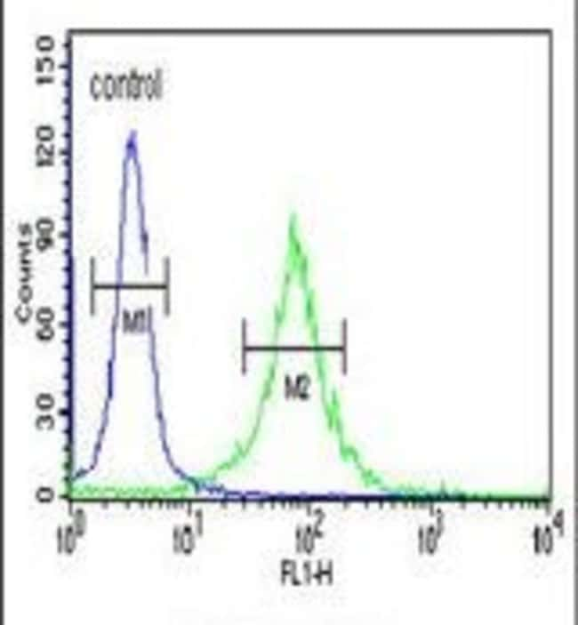 AMER1 Rabbit anti-Human, Mouse, Polyclonal, Invitrogen 400 µL; Unconjugated
