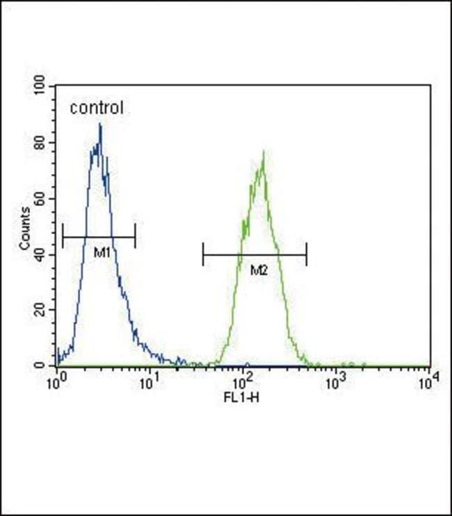 XDH Rabbit anti-Human, Mouse, Polyclonal, Invitrogen 400 µL; Unconjugated