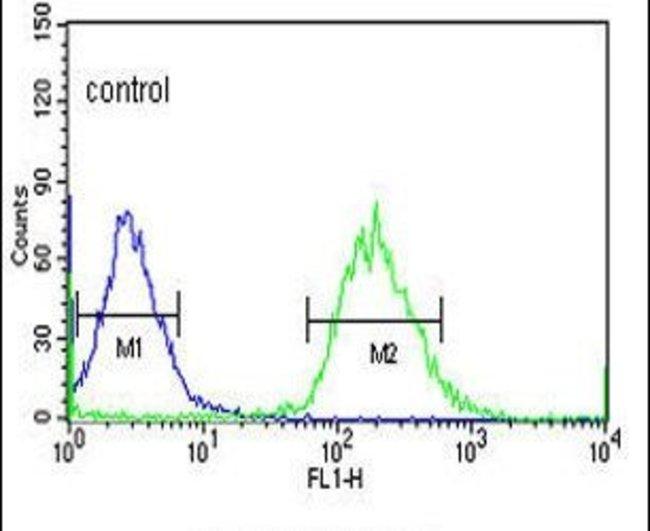 YME1L1 Rabbit anti-Hamster, Human, Polyclonal, Invitrogen 400 µL;