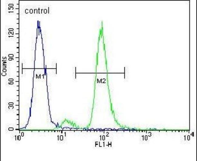 ZIK1 Rabbit anti-Human, Polyclonal, Invitrogen 400 µL; Unconjugated