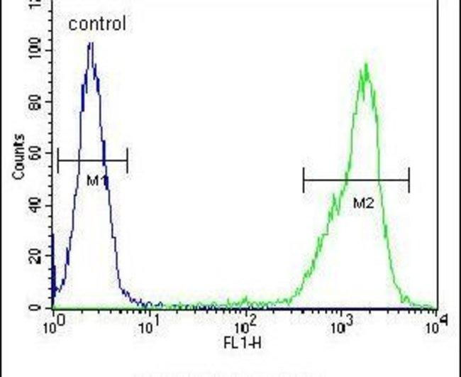 ZNF180 Rabbit anti-Human, Polyclonal, Invitrogen 400 µL; Unconjugated