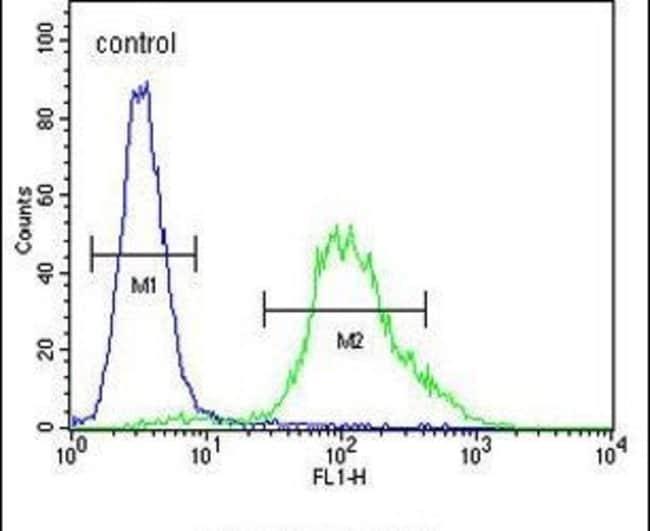 ZNF98 Rabbit anti-Human, Polyclonal, Invitrogen 400 µL; Unconjugated