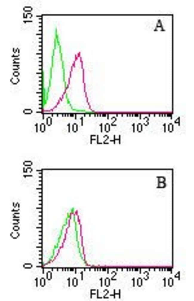 D4-GDI Mouse anti-Human, Clone: 10D774, Invitrogen 100 µg; Unconjugated