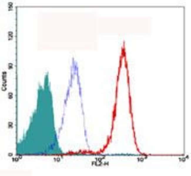 TRF2 Mouse anti-Human, Mouse, Rat, Clone: 4A794.15, Invitrogen 100 µg;