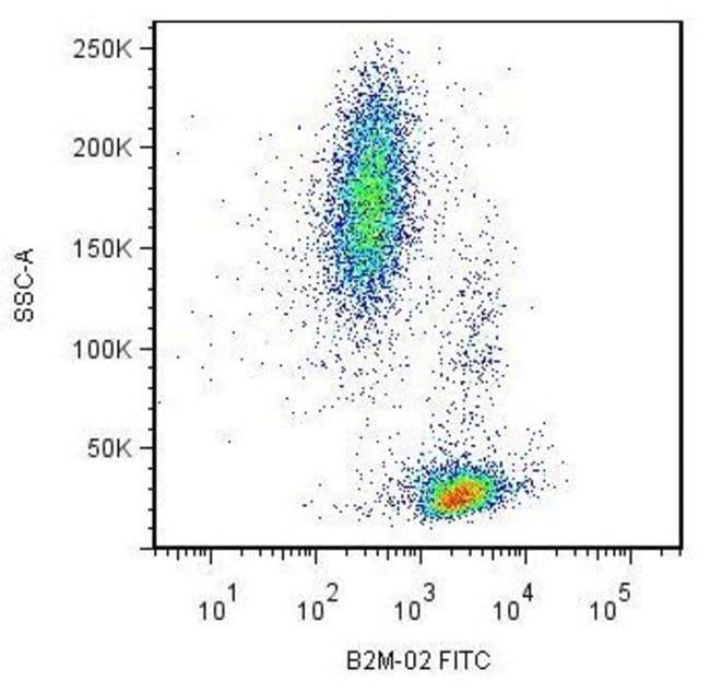 beta-2 Microglobulin Mouse anti-Human, Porcine, Clone: B2M-02, Invitrogen