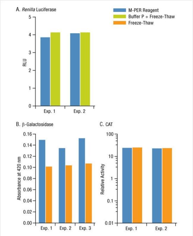 Thermo ScientificM-PER Mammalian Protein Extraction Reagent:Protein Analysis