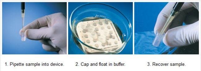 Thermo Scientific Slide-A-Lyzer MINI Dialysis Device, 10K MWCO :Life Sciences:Protein