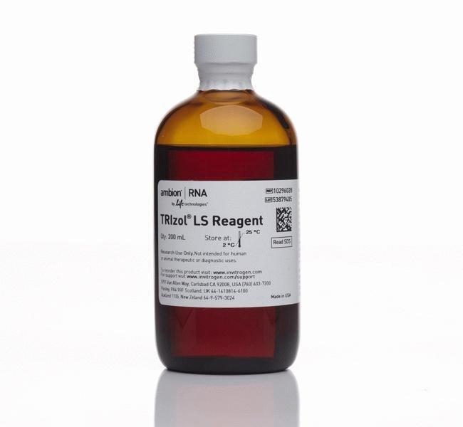 InvitrogenTRIzol LS Reagent 200mL:Molecular Biology Reagents and Kits