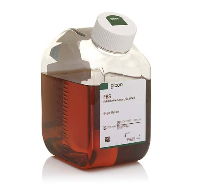 GibcoFetal Bovine Serum, qualified, USDA-approved regions 1000mL:Cell Lines