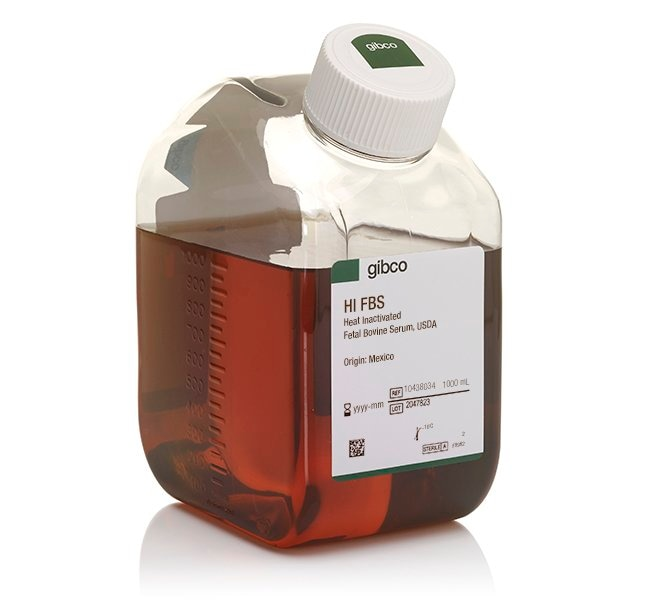 Gibco Fetal Bovine Serum, qualified, heat inactivated, USDA-approved regions