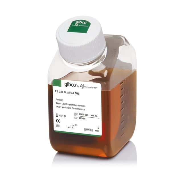 Gibco™Embryonic stem-cell FBS, qualified, USDA-approved regions 500mL Gibco™Embryonic stem-cell FBS, qualified, USDA-approved regions