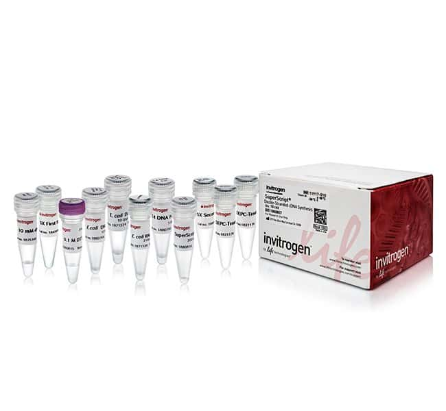 Invitrogen™ SuperScript™ Double-Stranded cDNA Synthesis Kit