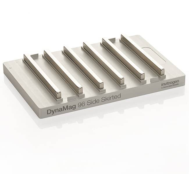 Invitrogen™ DYNAL™ Dynabeads™ MPC; DynaMag-96 Magnet mit Seitenumrandung Je 1 Magnetic Particles