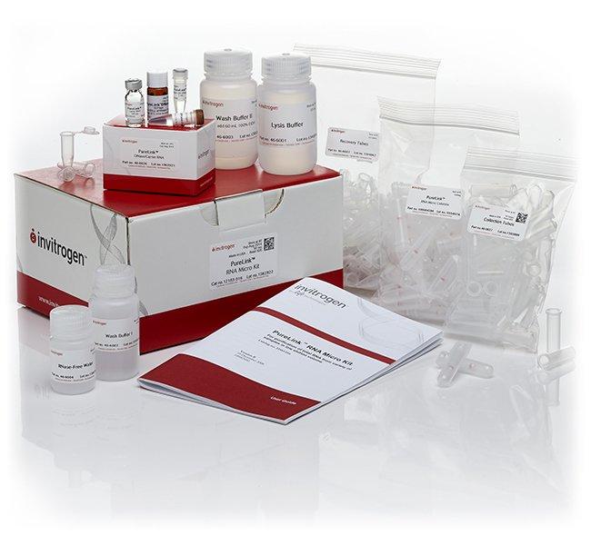 InvitrogenPureLink RNA Micro Scale Kit 50 Preps:Molecular Biology Reagents