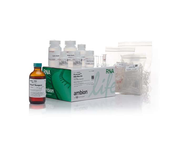 Invitrogen TRIzol Plus RNA Purification Kit   50 preps:Life Sciences