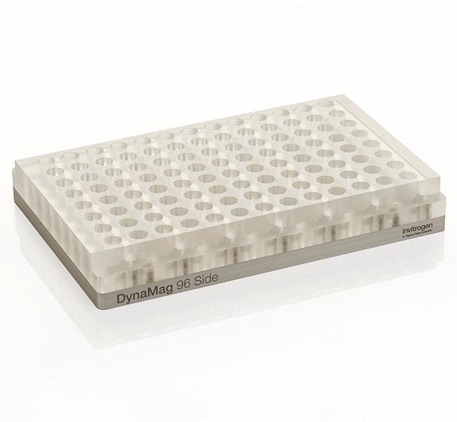 Invitrogen™DynaMag™-96 Side Magnet