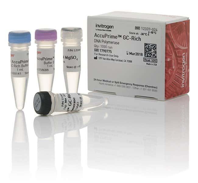 InvitrogenAccuPrime GC-Rich DNA Polymerase 1000 reactions:PCR Equipment