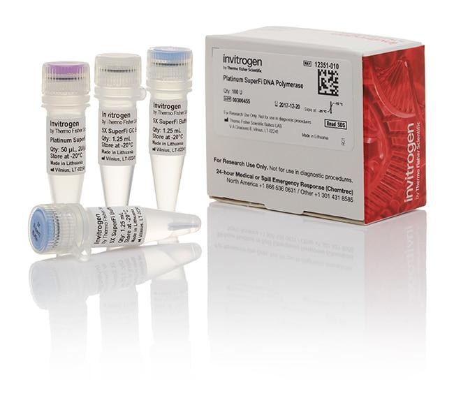 InvitrogenPlatinum SuperFi DNA Polymerase 100 Units, DNA polymerase supplied