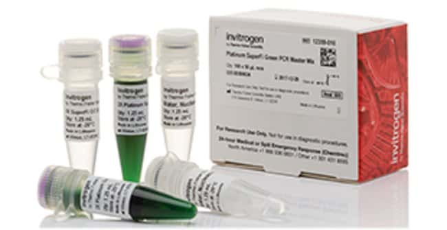 Invitrogen™ Platinum™ SuperFi™ Green PCR Master Mix 100 rxns, 2X master mix, green Invitrogen™ Platinum™ SuperFi™ Green PCR Master Mix