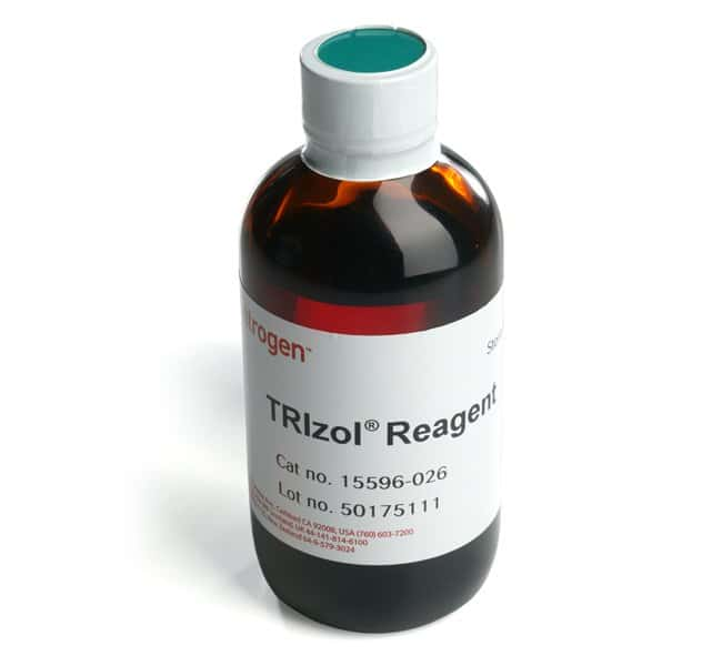 Invitrogen TRIzol Reagent   100mL:Life Sciences