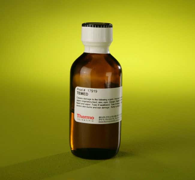 Thermo Scientific TEMED TEMED solution; 25mL:Life Sciences
