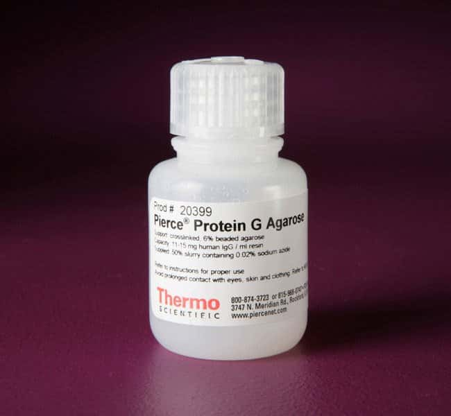 Thermo Scientific™ Pierce™ Protein G Agarose Resin; 10mL Thermo Scientific™ Pierce™ Protein G Agarose