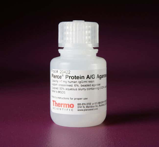 Thermo Scientific™ Pierce™ Protein A/G Agarose Resin, 15mL Thermo Scientific™ Pierce™ Protein A/G Agarose