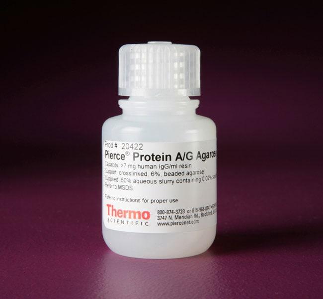 Thermo Scientific™Pierce™ Protein A/G Agarose Resin, 15mL Thermo Scientific™Pierce™ Protein A/G Agarose