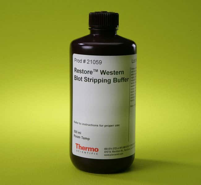 Thermo Scientific™ Restore™ Western Blot Stripping Buffer