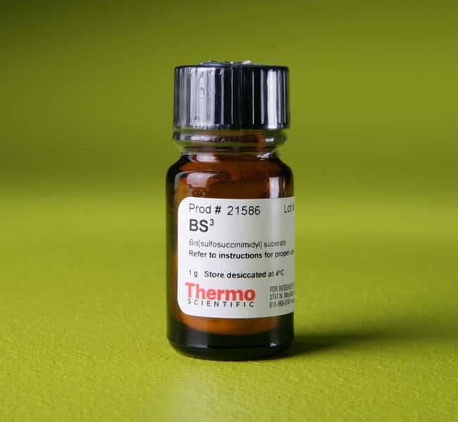 Thermo Scientific™ BS3 (bis(sulfosuccinimidyl)suberate) 1g Thermo Scientific™ BS3 (bis(sulfosuccinimidyl)suberate)