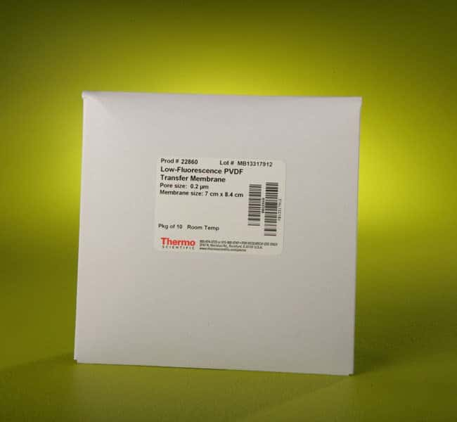 Thermo Scientific Pierce PVDF Membranes Low-Fluorescence