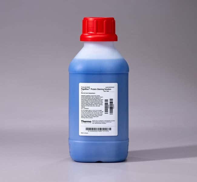 Thermo Scientific PageBlue Protein Staining Solution Protein electrophoresis:Electrophoresis,