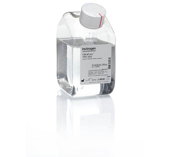 Invitrogen™UltraPure™ SDS Solution, 10% 1L Invitrogen™UltraPure™ SDS Solution, 10%