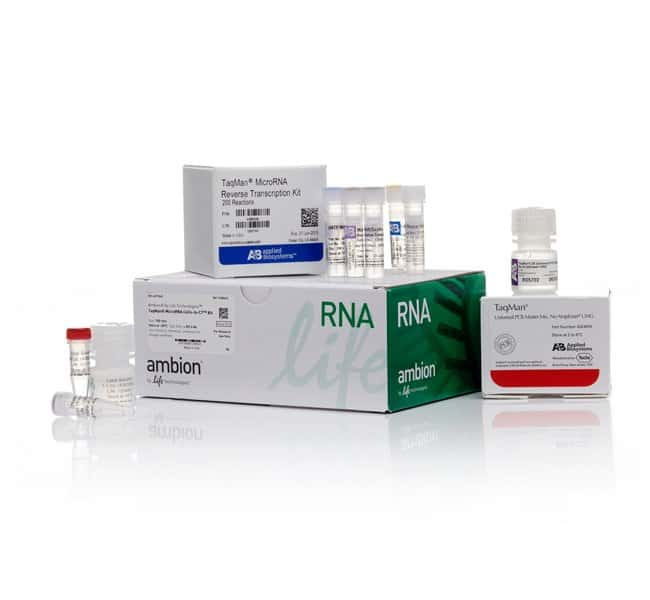 Invitrogen&trade;&nbsp;TaqMan&trade; MicroRNA Cells-to-C<sub>T</sub>&trade; Kit 100 reactions Real Time PCR Reagents and Kits