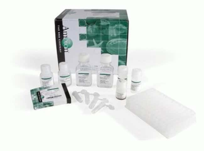 Invitrogen MagMAX for Stabilized Blood Tubes RNA Isolation Kit, compatible