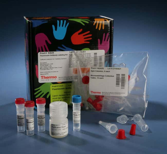 Thermo Scientific™ DyLight™ Antibody Labeling Kits 800 Labeling Kit; 3-rxn kit Thermo Scientific™ DyLight™ Antibody Labeling Kits