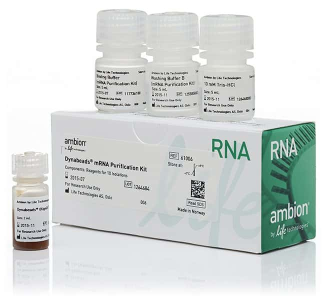 Invitrogen™ Dynabeads™ mRNA Purification Kit (for mRNA purification from total RNA preps)