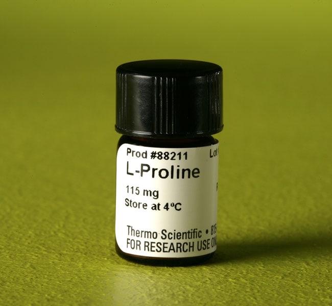 Thermo Scientific™L-Proline for SILAC L-Proline; 50mg Thermo Scientific™L-Proline for SILAC