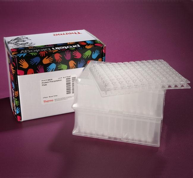 Thermo Scientific™Pierce™ Protein Precipitation Plates 2 plates Thermo Scientific™Pierce™ Protein Precipitation Plates