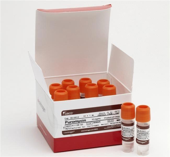 Gibco™Puromycin Dihydrochloride 10x1ml Gibco™Puromycin Dihydrochloride