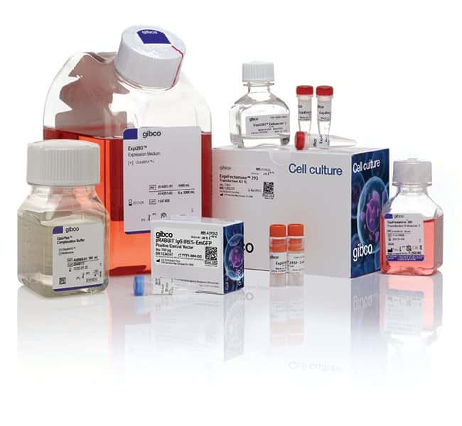 Gibco™ Expi293™ Expression System Kit
